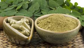 Moringa Farmig in Nigeria: Step By Step Guide