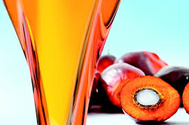 Palm Oil Farming in Nigeria: Step by Step Guide