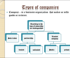 Types of Companies in Nigeria