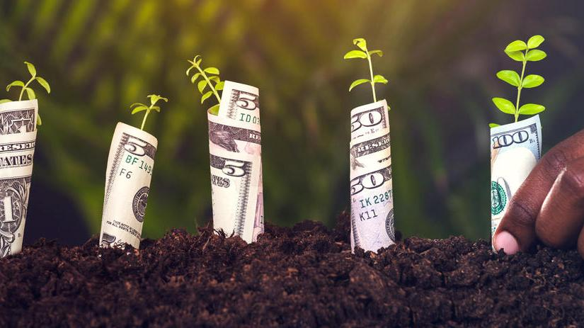 How Re-Investing Your Dividend Will Multiply Your Wealth Faster