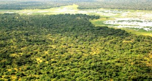 land acquisition in Nigeria
