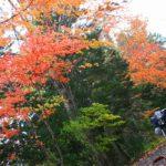 季節の風<北海道>