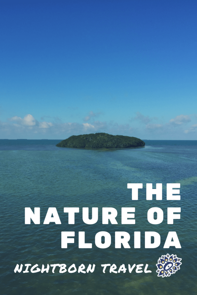 nature of florida