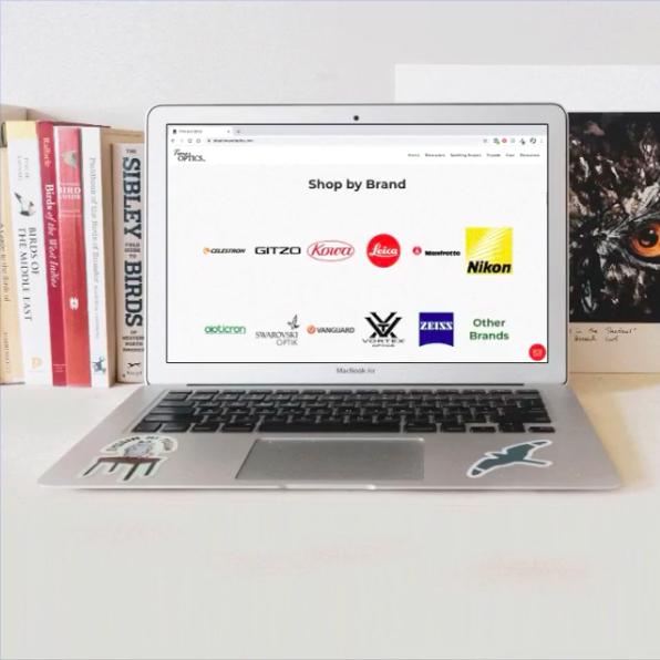 Time and Optics website