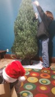 z-tree-decorating