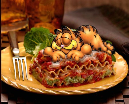 garfield-loves-lasagna-photo-by-generationsam-worth1000