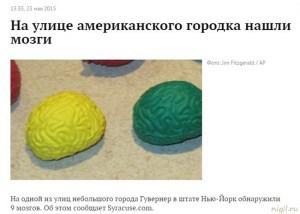 В штатах нашли мозги