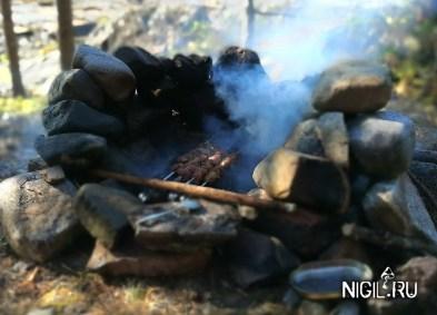 Шашлык из индейки