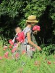 Poppy Sunday (3)