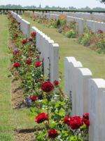 The Battle of the Somme (2)