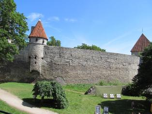 smallTowers and Turrets (10)