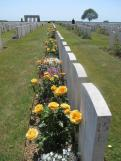 NZ War Graves, Somme Valley France