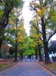 Tokyo UNi (4)