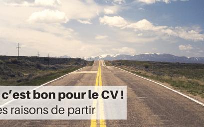 Le PVT, c'est bon pour le CV