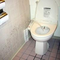 Utiliser les toilettes japonaises