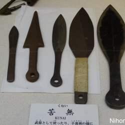 nagano-et-jigokudani-100