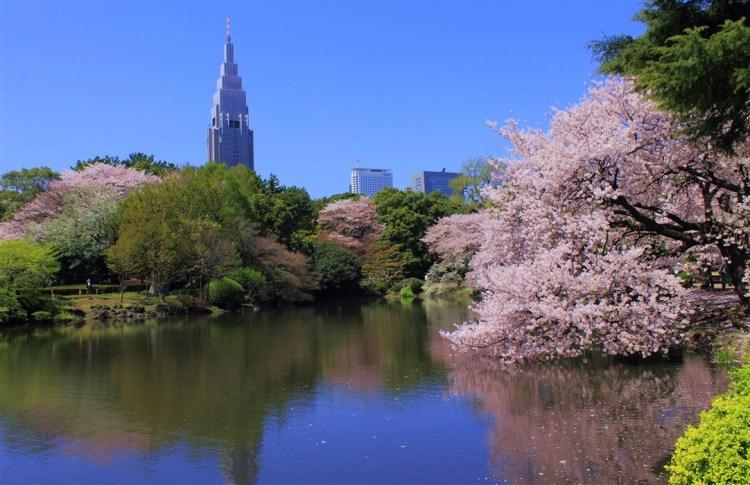 shinjuku-gyoen-parc