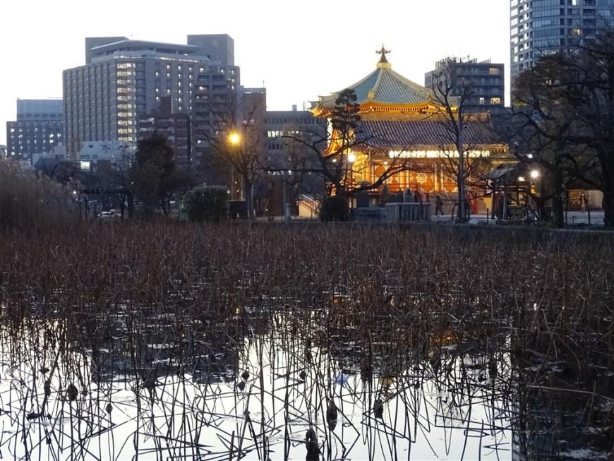 etang-temple-shinobazu-ueno