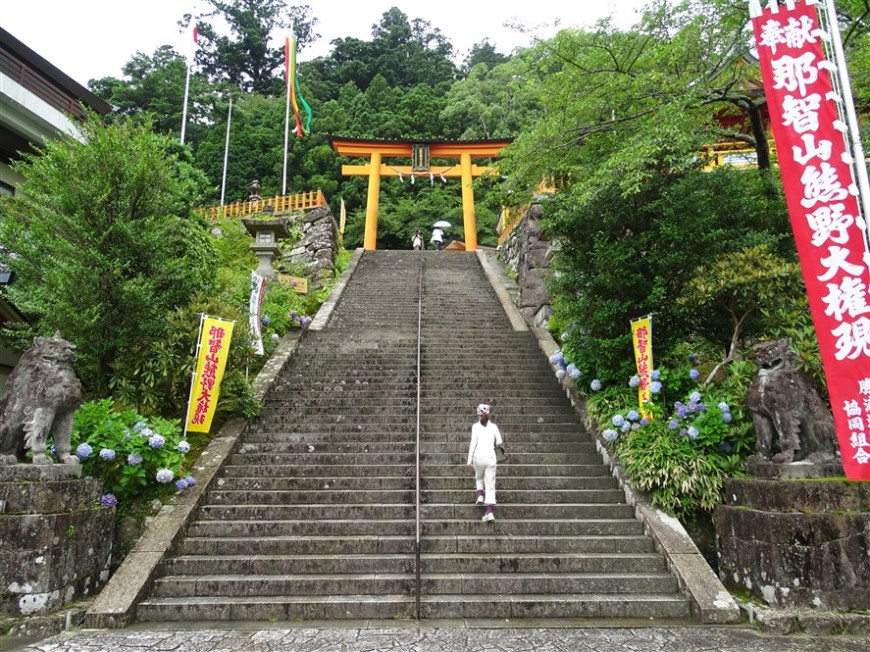 marches-nachi-taisha
