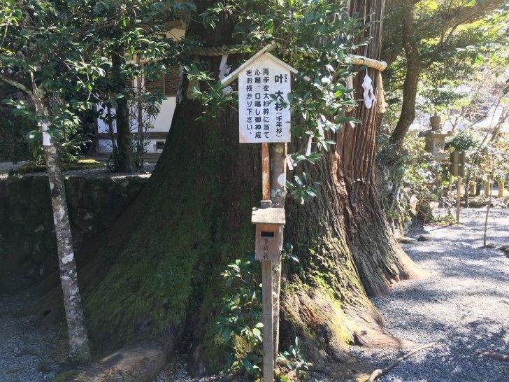 丹生川上神社 (60)