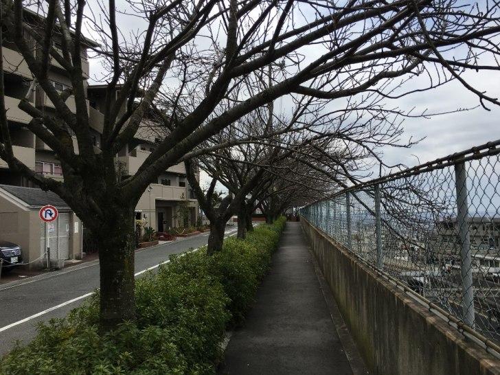 石切神社 (13) (1024x768)