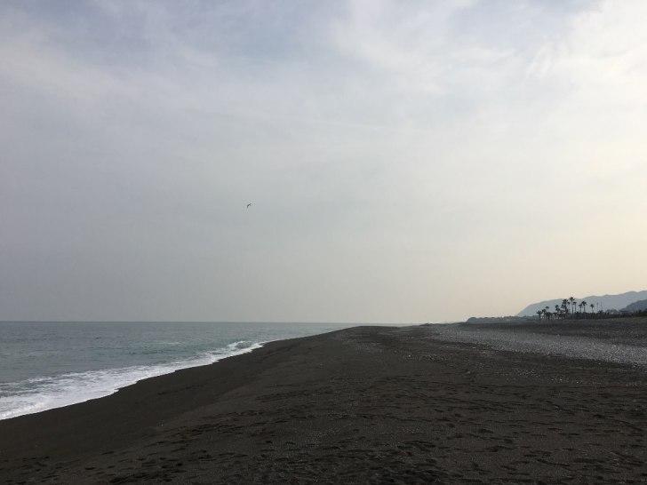 熊野灘 (10)