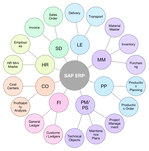 An overview of how different modules integrate to comprise an SAP system