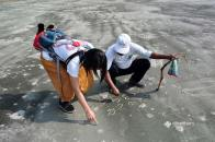 Drawing on the beach at Sundarbans