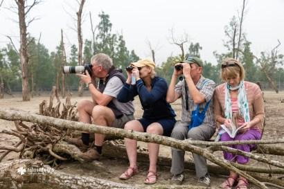 Wildlife spotting at Sundarbans