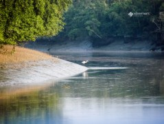 A canal inside Sundarbans. Photo: Masbah Mazumdar