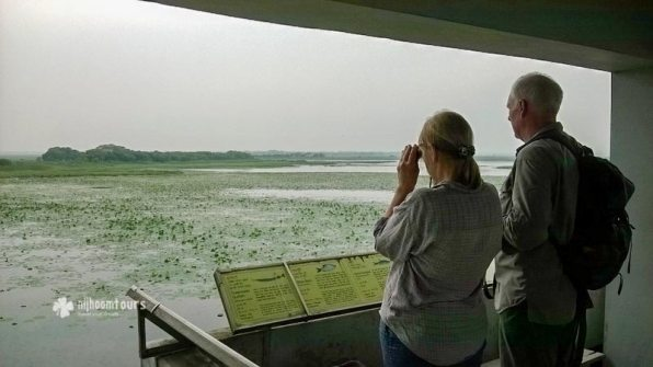 At Baikka Beal, a wetland sanctuary for migratory birds in Srimangal