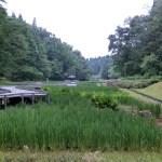 しらさぎ森林公園2
