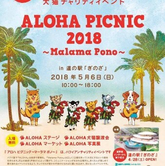 ALOHA PICNIC 2018