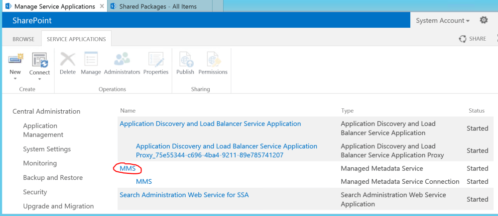 SharePoint Managed Metadata Service Application Name