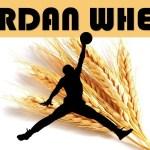 AIR JORDAN 1, 6, AND 13 WHEAT RELEASE DATES, YEEZY BELUGA 2.0 RELEASE DATE & MORE!!