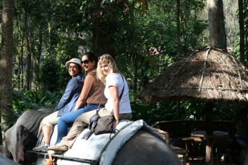 Elephant safari...a tip - being the third person on an elephant is challenging!