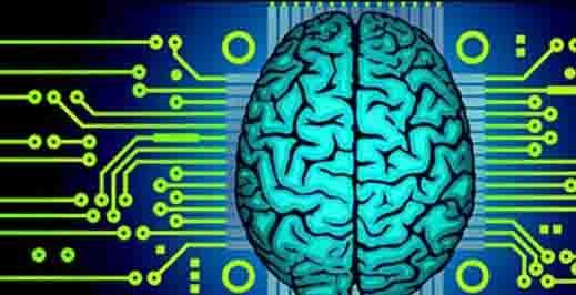 cum sunt conectate creierul și viziunea
