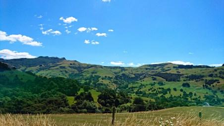 DSC_0766_NZ_Christchurch_WEB