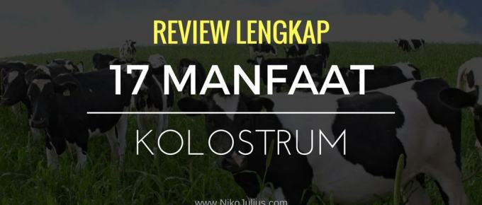 Review Lengkap : 17 Manfaat Kolostrum / Colostrum