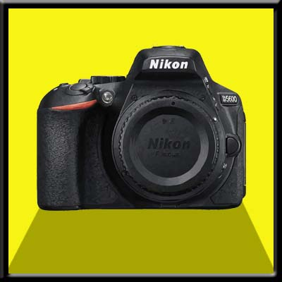 Nikon D5600 Firmware Update - Nikon Software & Firmware Download