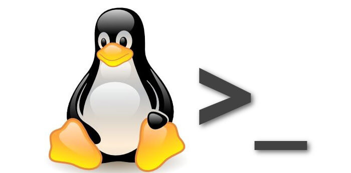 Linux shell useful commands