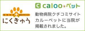 動物病院口コミサイト カルーペットに当院が掲載されました|埼玉県鶴ヶ島市の「動物往診+在宅ケアサービス にくきゅう