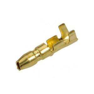 Male Bullet Terminal