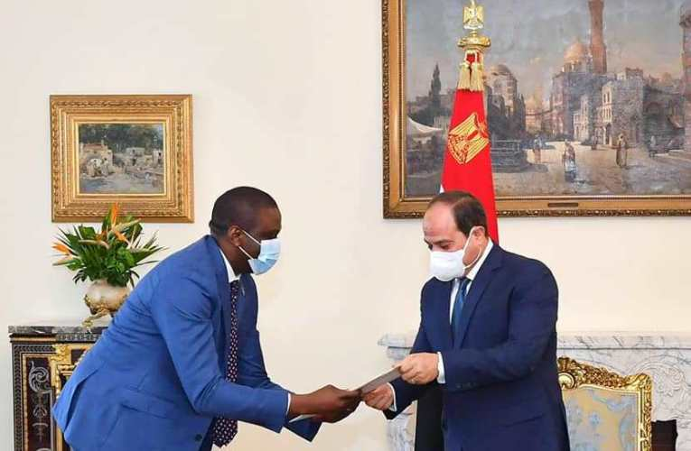 «رئيس الجمهورية» يتسلم رسالة من رئيس الكونغو حول العلاقات الثنائية بين البلدين