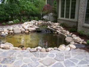 water features 003