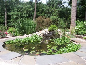 water features 025