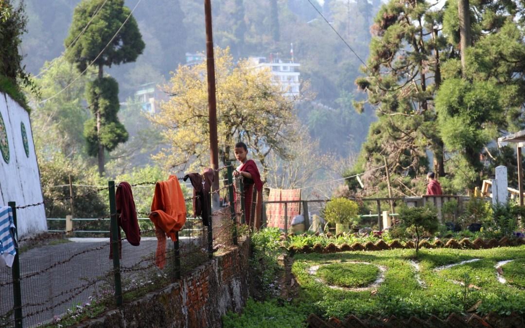 De retour du Sikkim/Bhoutan : partie Sikkim
