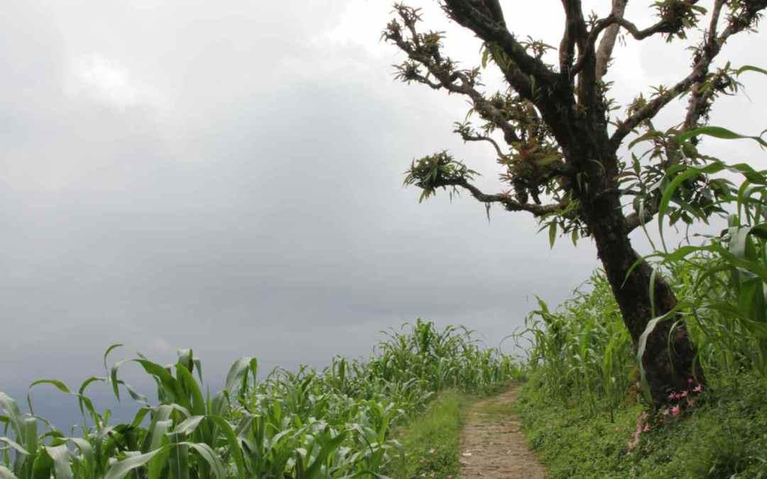 Sikkim part 2 : l'Ouest