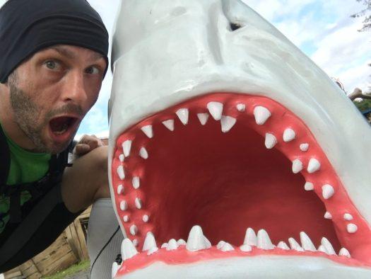 Nils mit Hai