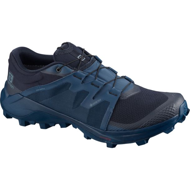 Salomon Wildcross GTX